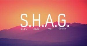 SHAG Scene image