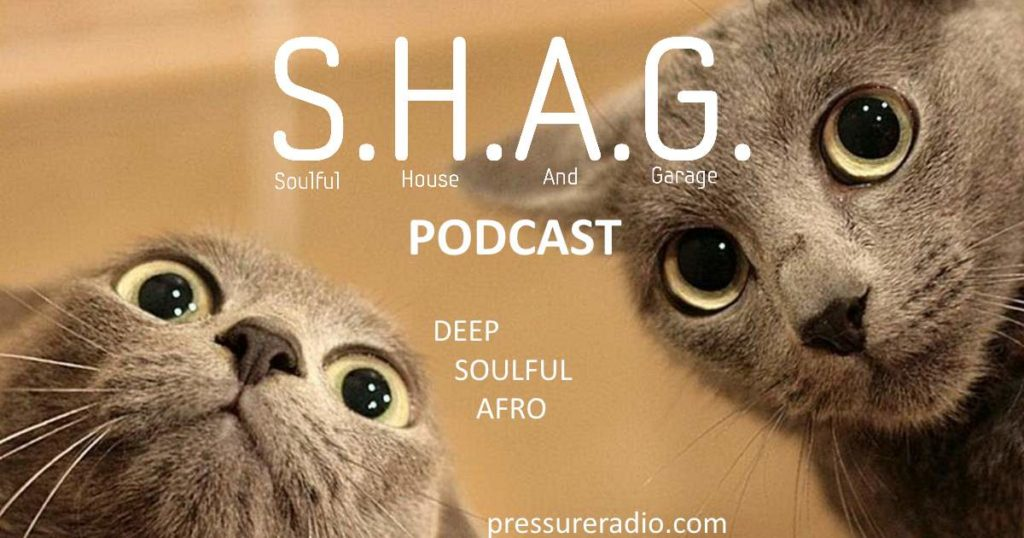 SHAG Podcast Cats image